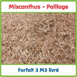 Miscanthus - Paillage Naturel